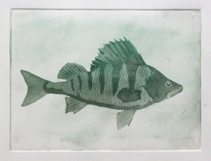 Angus grant fine art print Perch