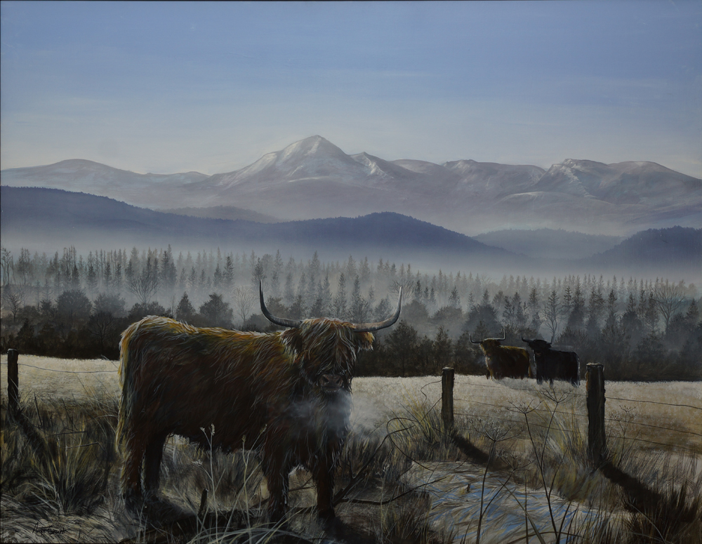 Acrylic on canvas, Highland cow, fine art painting, Angus Grant