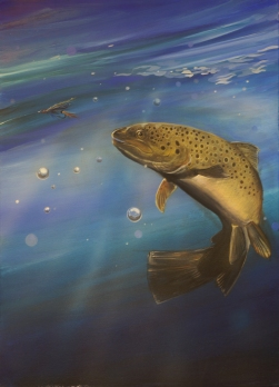 trout1
