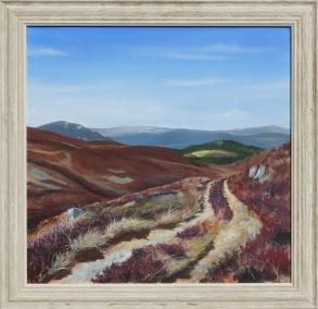 A track leading across a heather hillside