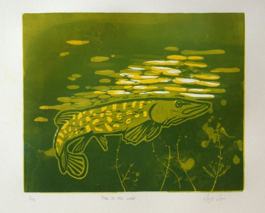 A three colour lino print of a pike in the water