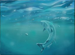 Painting of a trout swimming towards a lure