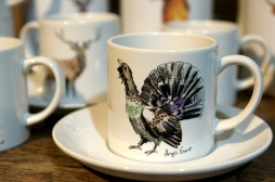 cup capercaillie, Scottish wildlife