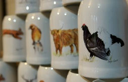 beer stein, black grouse, steins, Highland cow