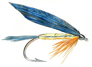 Kingfisher Butcher