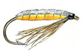 Partridge and orange bug