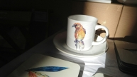 Crossbill cup