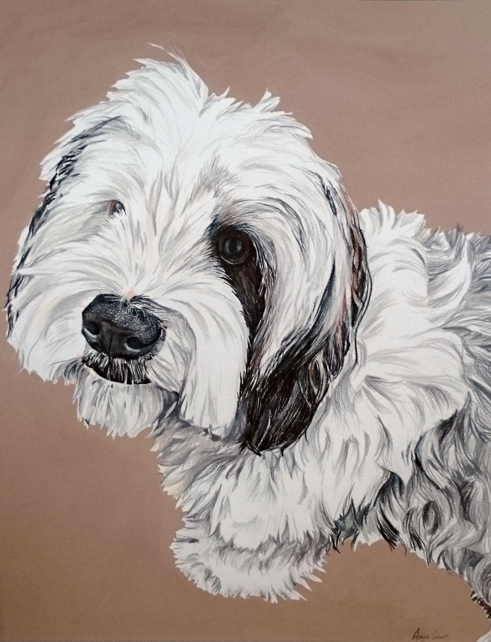 Brodie pet portrait by Angus Grant