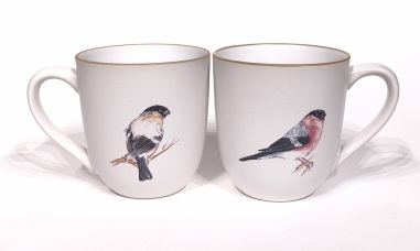 Bullfinch chunky mug by Angus Grant