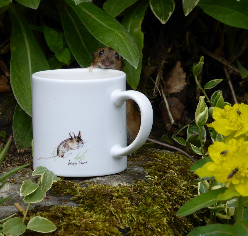 Mouse with a mouse mug by Daphne Ritchie