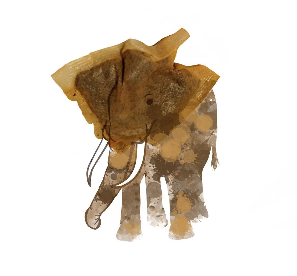 Elephant by Angus Grant Art