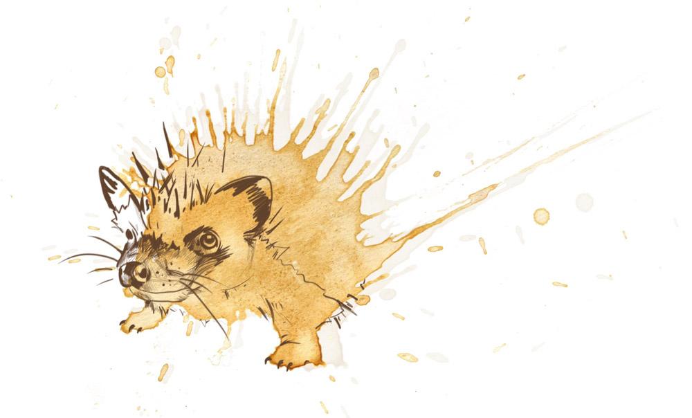 Hedgehog by Angus Grant Art
