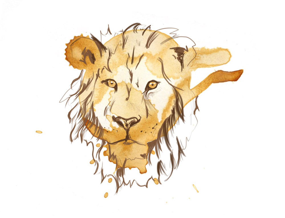 Lion by Angus Grant Art