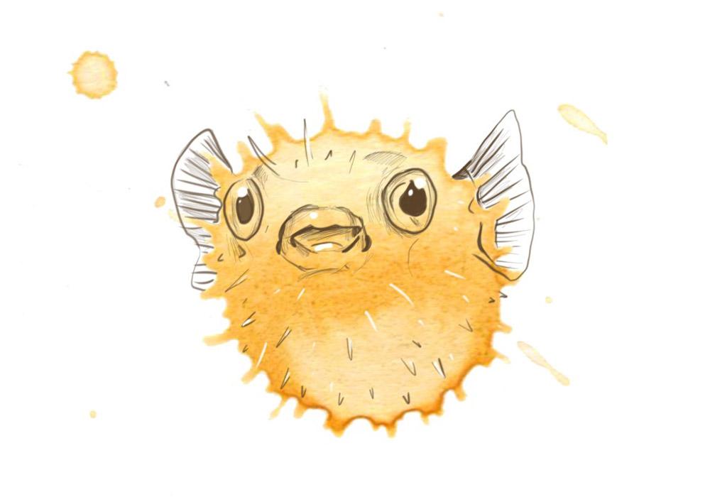 Pufferfish by Angus Grant Art